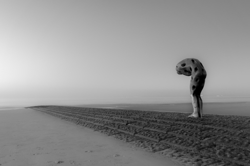 Landschapsfotografie te Knokke