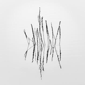 Experimenteel, minimalistisch